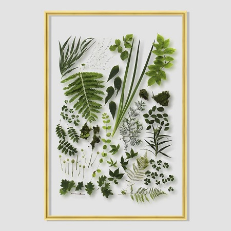 still-acrylic-wall-art-spring-botanicals-1-o